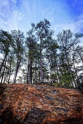 Photograph - Rocky Pines by Alan Raasch