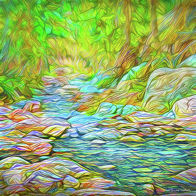 Digital Art - Rocky River Stroll by Joel Bruce Wallach