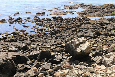 Photograph - Rocky Rugged Coastline by Living Color Photography Lorraine Lynch