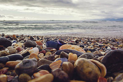 Photograph - Rocky Shore by April Reppucci