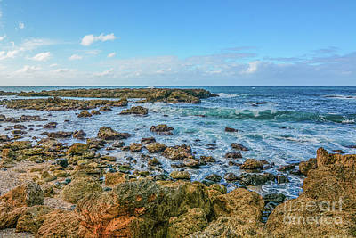 Photograph - Rocky Shore by Calvin Fannin