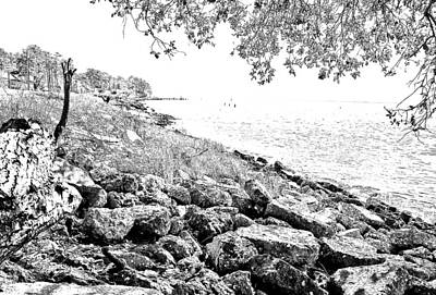 Photograph - Rocky Shore by Ches Black