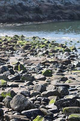 Photograph - Rocky Shore Of Sand Beach by Living Color Photography Lorraine Lynch