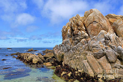 Photograph - Rocky Shores by Gina Savage