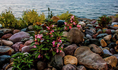 Photograph - Rocky Shores Of Lake St. Clair- Michigan by Joann Copeland-Paul