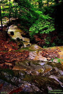 Photograph - Rocky Stream by Lisa Wooten