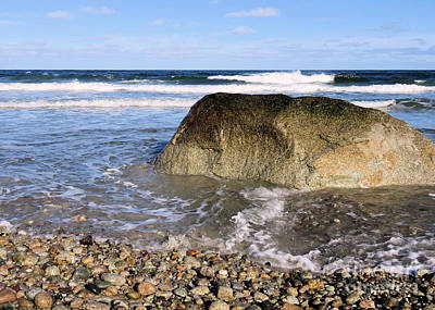 Photograph - Rocky White Horse Beach  by Janice Drew