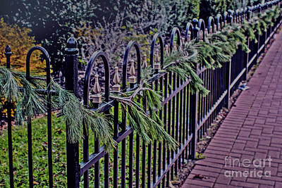 Photograph - Rod Iron Fence At First Presbyterian Church by Sandy Moulder
