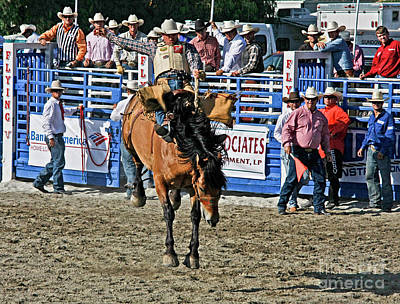 Photograph - Rodeo 7 by Tom Griffithe