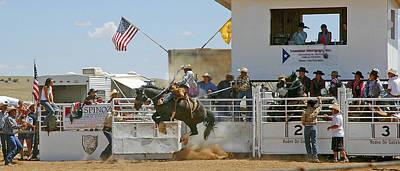 Rodeo Bronco Original by Burt Plotkin