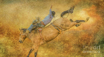 Digital Art - Rodeo Bronco Riding Five by Randy Steele