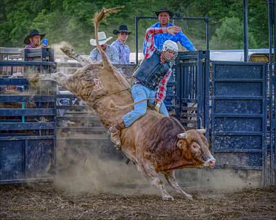 Sports Photograph - Rodeo Buck by LeeAnn McLaneGoetz McLaneGoetzStudioLLCcom
