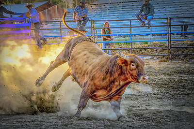 Photograph - Rodeo Bull On Fire by LeeAnn McLaneGoetz McLaneGoetzStudioLLCcom