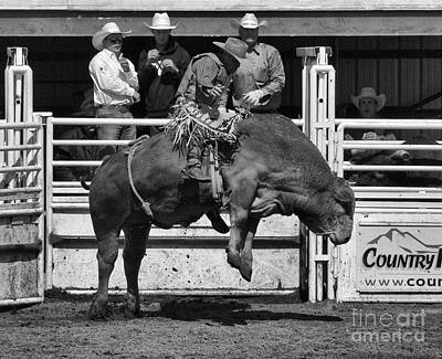 Bull Riding Photograph - Rodeo Bull Riding 4 by Bob Christopher