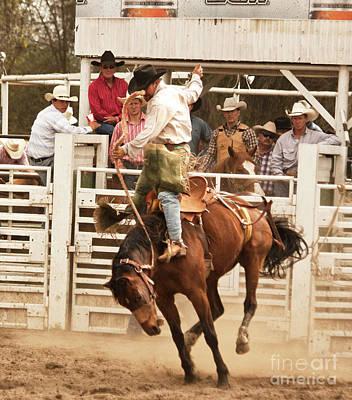 Rodeo Cowboy Riding A Wild Horse Original by Mark Hendrickson