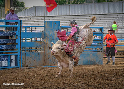 Photograph - Rodeo Eastern Michigan Fair by LeeAnn McLaneGoetz McLaneGoetzStudioLLCcom
