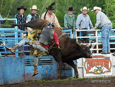 Bull Riding Photograph - Rodeo Life 6 by Bob Christopher