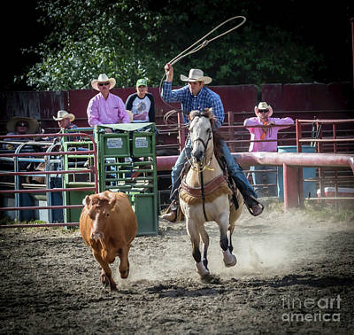 Photograph - Cowboy In Action#1 by Sal Ahmed