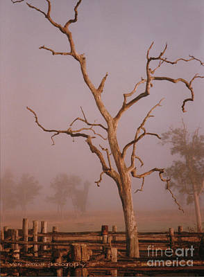 Photograph - Rodeo Mist by Vicki Ferrari