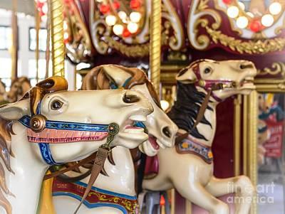 Brindle Photograph - Roger Williams Park Carousel by Lisa Kilby