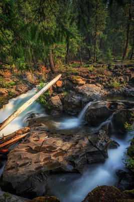 Photograph - Rogue River by Cat Connor