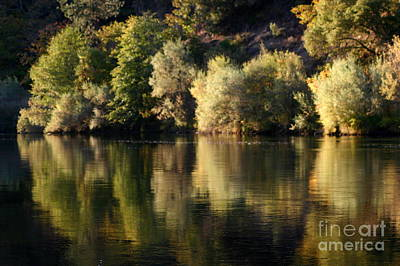 Photograph - Rogue River Mirror by Marie Neder