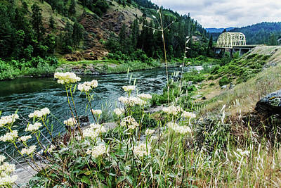 Photograph - Rogue River Near Galice by Mick Anderson