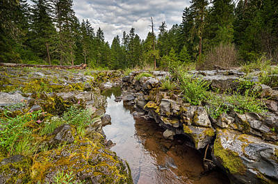 Photograph - Rogue River Near Union Creek by Greg Nyquist