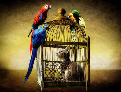 Cage Mixed Media - Role Reversal by Gerhard Gellinger