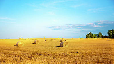 Photograph - Rolled Hay by Onyonet  Photo Studios