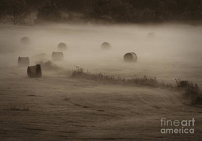 Photograph - Rolling Field Of Hay Bales by Tamara Becker