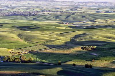 Photograph - Rolling Fields Of Grain Palouse Wa Dsc04416 by Greg Kluempers