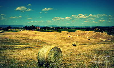 Photograph - Rolling Fields Of Tuscany by Lainie Wrightson