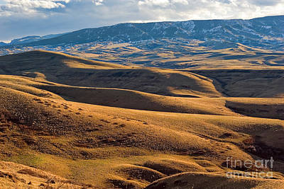 Rolling Foothills And The Bighorn Mountains Art Print
