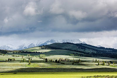 Photograph - Rolling Green Hills In Yellowstone National Park by Astrid Hinderks