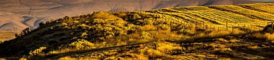 Water Droplets Sharon Johnstone - Rolling Hills - Deep Valleys by Albert Seger
