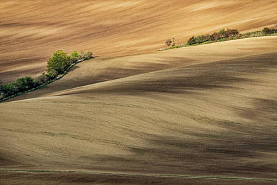 Photograph - Rolling Hills In Moravia #2 by Stuart Litoff