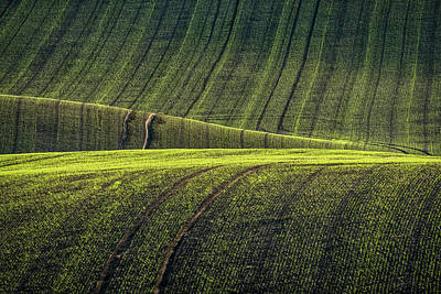 Photograph - Rolling Hills In Moravia #4 by Stuart Litoff