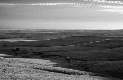 Photograph - Rolling Hills by Thomas Bomstad