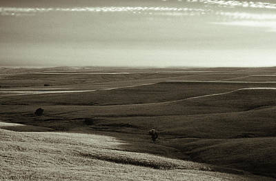 Photograph - Rolling Hills Toned by Thomas Bomstad