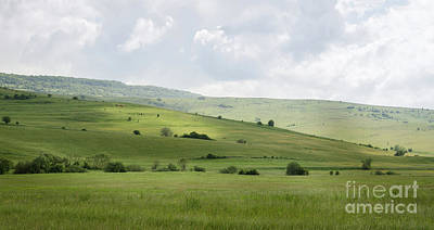 Photograph - Rolling Landscape, Romania by Perry Rodriguez