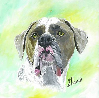 Painting - Rolly The Italian Bullmastiff by Susan Harris