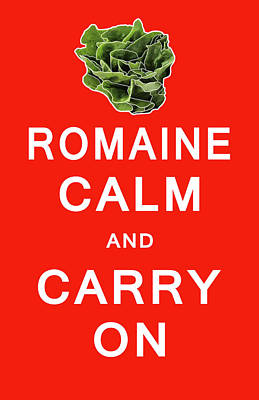 Lettuce Digital Art - Romaine Calm And Carry On by Daniel Hagerman