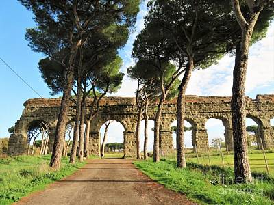 Photograph - Roman Aqueducts by Laurie Morgan