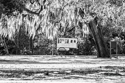 Roman Candy Cart Photograph - Roman Candy Cart Under The Oaks - Bw by Scott Pellegrin