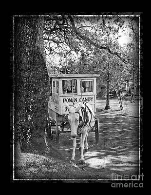 Roman Candy Cart Photograph - Roman Candy by Jeanne  Woods