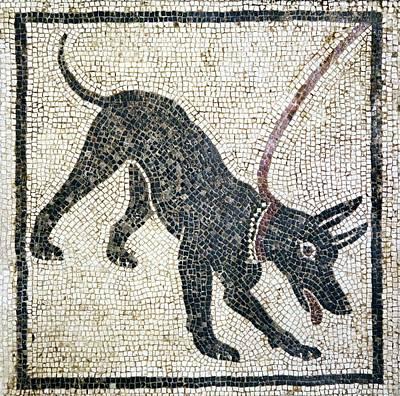 Roman Guard Dog Mosaic Art Print by Sheila Terry
