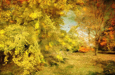 Photograph - Romance Impressionism by Diana Angstadt