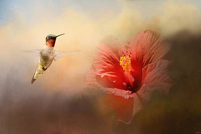 Tiny Bird Photograph - Romancing The Hibiscus by Jai Johnson