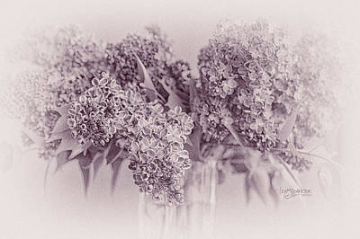 Photograph - Romancing The Lilac by Joy Gerow